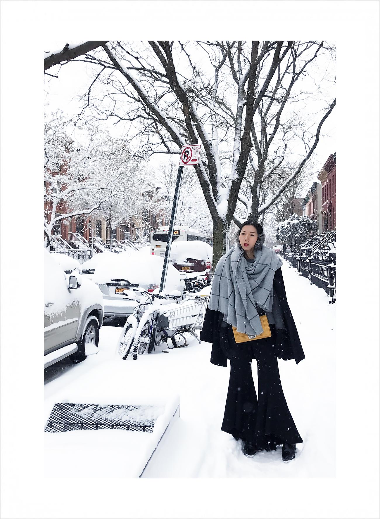 Snow-NewYorkCity-4